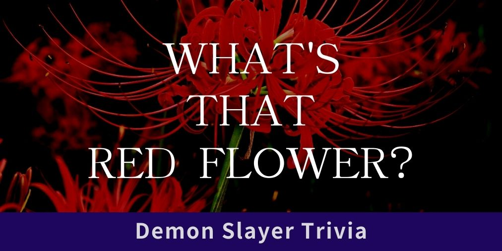what's that red flower? demon slayer trivia