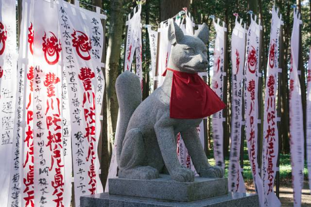 picture: a fox statue of the divine messenger in japan