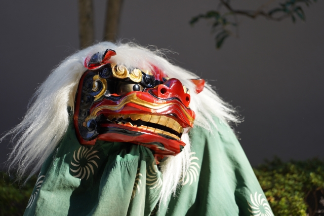 picture: japanese traditional dance shishimai, meaning lion dance